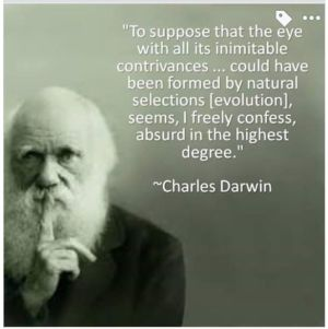 darwin-absurd